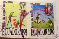 ecuador-img_0069-maria-de-bruyn