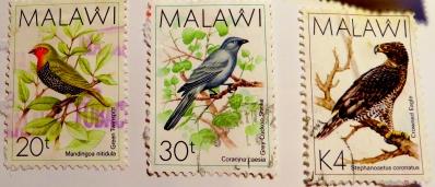 malawi-img_0084-maria-de-bruyn