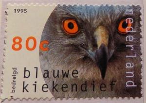 nl-img_0056-maria-de-bruyn