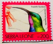 sierra-leone-img_0057-maria-de-bruyn