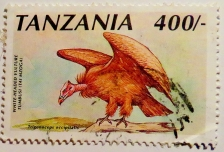 tz-stamp-img_0092-maria-de-bruyn