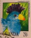 uganda-img_0072-maria-de-bruyn