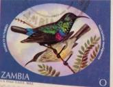 zambia-2-img_0080-maria-de-bruyn