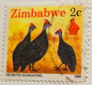 zimbabwe-img_0077-maria-de-bruyn