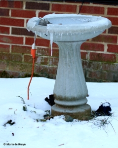 heated-fountain-i77a3586-maria-de-bruyn-res